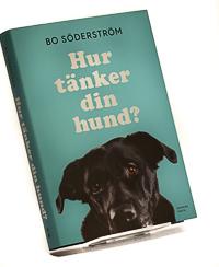 Hur tänker din hund